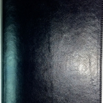 ESV Waterproof Bible: Black Imitation Leather